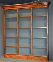 Burr Walnut Open Bookcase (2 of 2)
