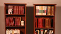 Pair of Open Bookcase - 19th Century in Mahogany (2 of 9)