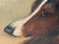 Pair of Scottish 19th Century Oil Paintings Rough Collie Dog Portraits After George Washington Brownlow (31 of 49)