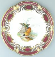 Fine & Rare Colebrookdale Porcelain John Rose Cabinet Plate 19th Century
