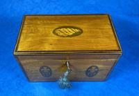 George III Satinwood Twin Tea Caddy with Prince of Wales Inlay (2 of 15)