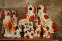 Staffordshire Dogs (4 of 4)