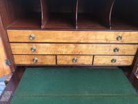 Sheration Period Satinwood & Coramandel Writing Cabinet (9 of 11)