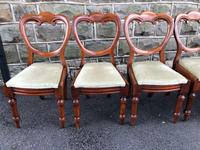 Antique Set of 6 Mahogany Balloon Back Dining Chairs (10 of 11)