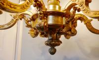 French Gilded Brass 6 Branch Rococo Chandelier (2 of 10)