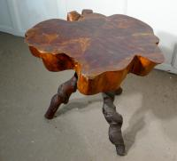 Solid Slice of Burr Chestnut Coffee Table c.1900