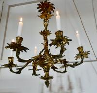 French Gilded Brass 6 Branch Rococo Chandelier (8 of 11)