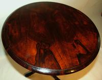 William IV Rosewood Tripod Table (2 of 5)