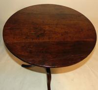 Georgian Oak Birdcage Tripod Table (7 of 7)