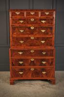 Large Queen Anne Burr Walnut Chest on Chest (4 of 15)