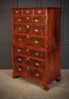 Large Queen Anne Burr Walnut Chest on Chest (9 of 15)