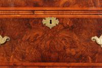 Large Queen Anne Burr Walnut Chest on Chest (7 of 15)
