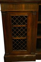 Rosewood & Brass Open Bookcase c.1815 (4 of 6)