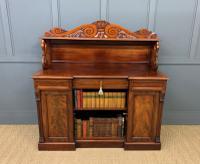 Early 19th Century Mahogany Chiffonier Bookcase (20 of 22)