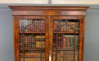 Edwardian Inlaid Mahogany Bookcase (14 of 21)