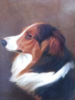 Oil on Canvas Study of a Dog Listed Artist Collin Graeme Roe 1890 (Free Shipping to Mainland England) (5 of 10)