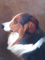 Oil on Canvas Study of a Dog Listed Artist Collin Graeme Roe 1890 (Free Shipping to Mainland England) (9 of 10)