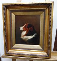 Oil on Canvas Study of a Dog Listed Artist Collin Graeme Roe 1890 (Free Shipping to Mainland England)