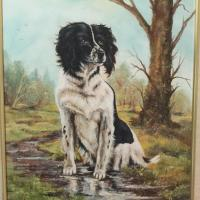 Large Oil Painting Study of Spaniel Dog Sitting