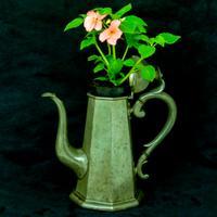 'Georgian Style' Victorian Coffee Pot c.1890 (6 of 8)