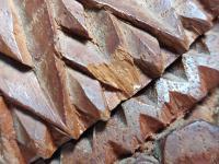 Hand Carved Wood Carving Tobacco Jar Box in Merbau Mahogany Indonesia (9 of 9)