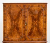 Walnut Queen Anne Style Drinks Cabinet (9 of 9)