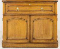 Victorian Blonde Oak Bookcase c.1860 (4 of 8)