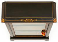Arts & Crafts Ebonised Pier Cabinet (5 of 8)