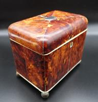 Good Regency Period Tortoiseshell Tea Caddy (4 of 7)