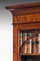 Regency Period Mahogany Bookcase with Gothic Tracery (5 of 7)