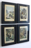 4 Framed Animal Coloured Pictures Plates c.1877 Sketches from Nature (4 of 8)