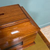 Striking Victorian Mahogany Antique Letter Box (5 of 5)