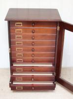 Mahogany Collectors Cabinet c.1890 (4 of 8)