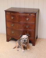 Mahogany Serpentine Front Chest of Drawers (3 of 8)