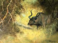 Original Artwork Oil Painting Greater Kudu Antelope Wild Animal Bush South Africa School G.Uys (19 of 22)