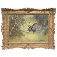 Original Artwork Oil Painting Greater Kudu Antelope Wild Animal Bush South Africa School G.Uys