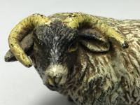 Early 20th Century Cold Painted Bronze Male RAm Horn Sheep Sculpture by Franz Bergman (28 of 29)