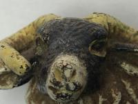 Early 20th Century Cold Painted Bronze Male RAm Horn Sheep Sculpture by Franz Bergman (3 of 29)