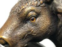 19th Century Victorian Bronze Bulls Sculpture After Paul Edouard Delabrierre (22 of 41)