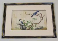 Antique Chinese Pith Painting Birds Set of Three (7 of 8)