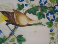 Antique Chinese Pith Painting Birds Set of Three (6 of 8)