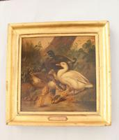 Charming Victorian Oil On Canvas Ducks & Ducklings (2 of 7)