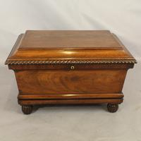 Regency Mahogany Wine Cooler