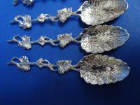 Antique Cased Silver Teaspoons. Sheffield 1895 (2 of 13)