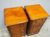 Pair of Victorian Mahogany Bedsides (6 of 11)