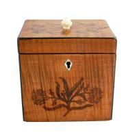 18th Century Satinwood Tea Caddy (3 of 8)