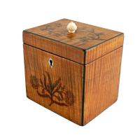 18th Century Satinwood Tea Caddy (2 of 8)