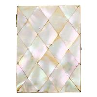 Victorian Mother of Pearl Card Case (6 of 8)