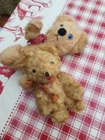 4 Miniature Antique Teddy Bears Plus 1 Miniature Toy Dog