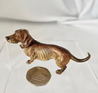 Cold Painted Miniature Dachshund (2 of 8)